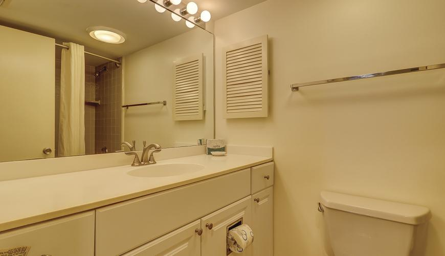 Guest Bath With Tub and Shower Combination